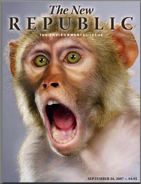 NewRepublicMonkey